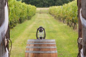winery venue